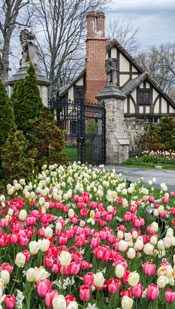 Stan-Hywet-gate-tulips