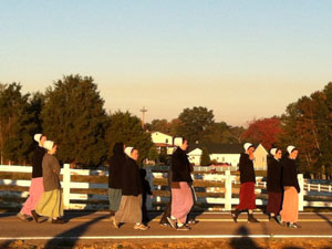 wheat-ridge-amish