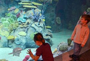 toledo-zoo-aquarium-ohio