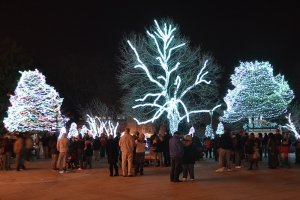 toledo-zoo-lights