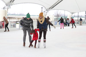 dayton ice skating rink